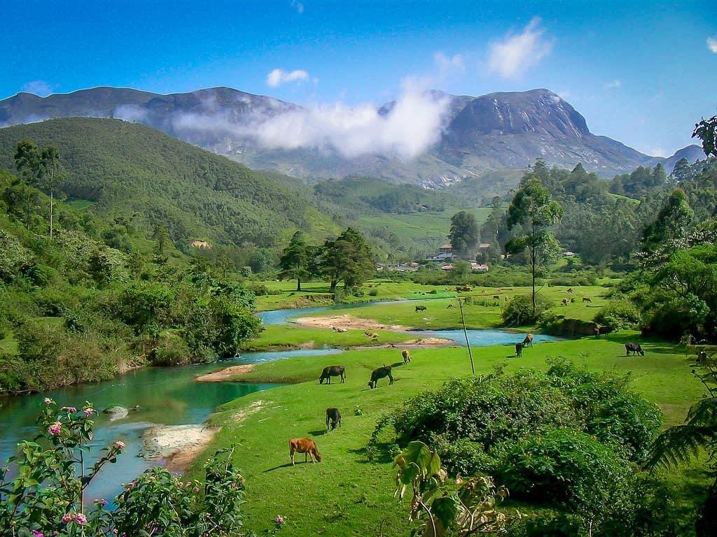 Đỉnh Anamudi, Munnar, Kerala, Ấn Độ