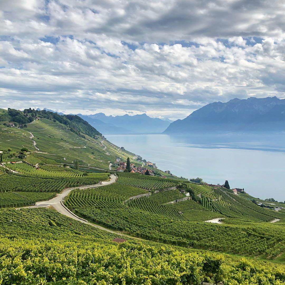 Lavaux, Thụy Sỹ