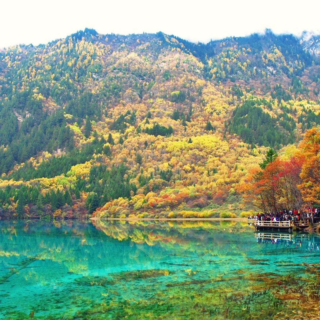 Jiuzhaigou, Cửu trại Câu, Tứ Xuyên, Trung Quốc