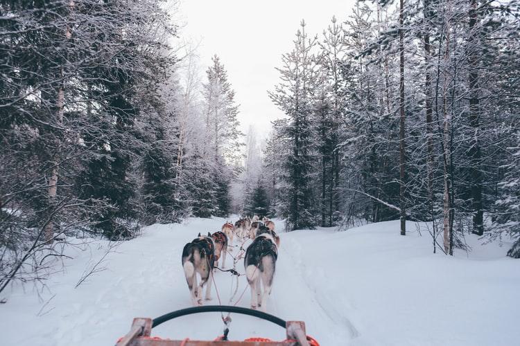 Làng Santa Claus, Rovaniemi, Phần Lan