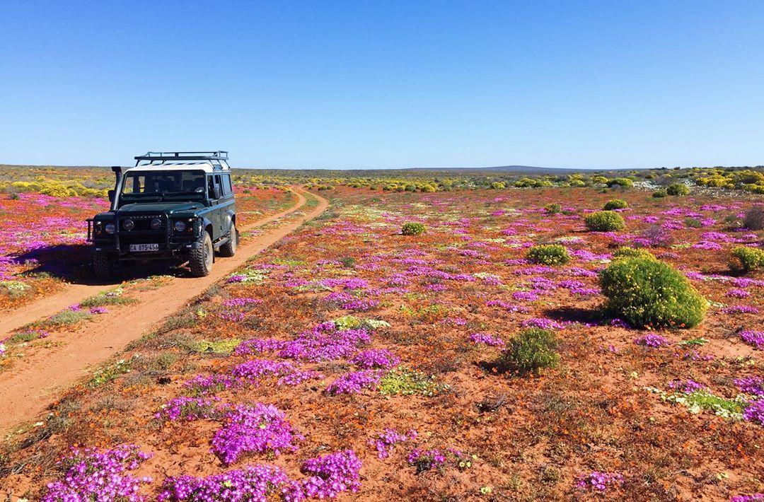 Hoang mạc Namaqualand, Nam Phi