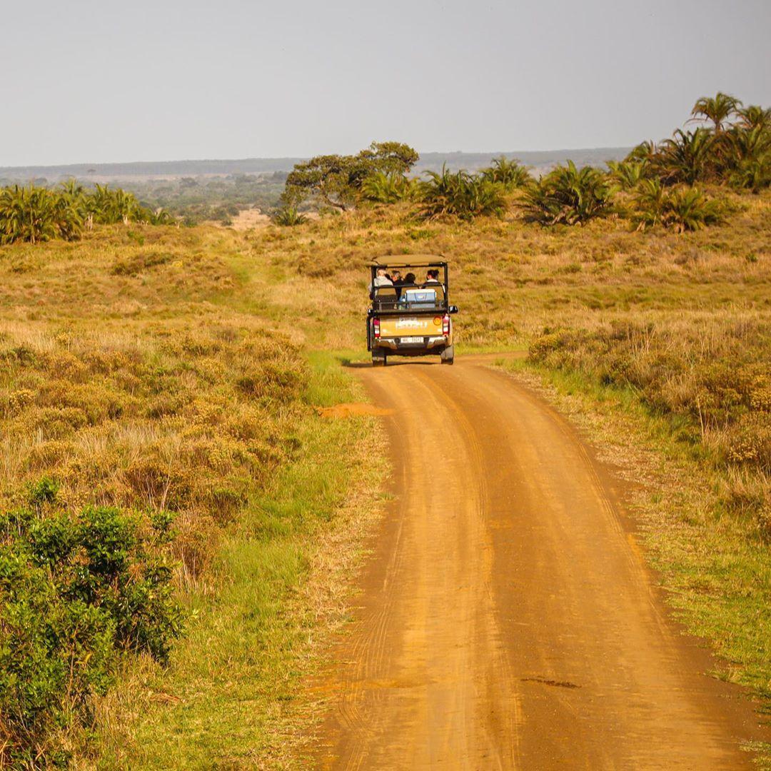 Công viên đầm lầy iSimangaliso, Nam Phi
