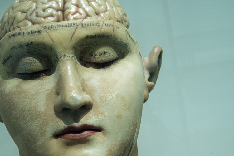 Những gì ta thấy lúc này là quá khứ, nên não bộ đang dự đoán hiện tại