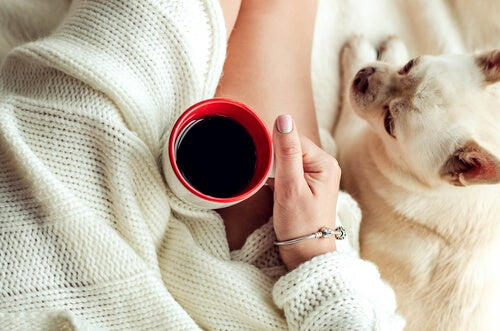 5 cách giúp bạn chiến thắng bệnh làm biếng