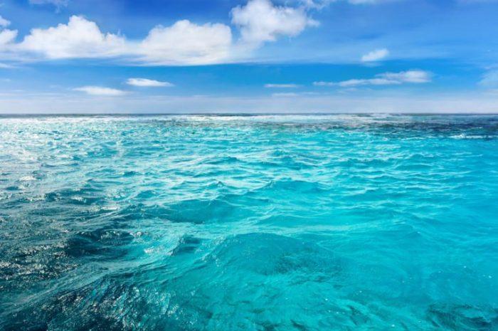 10 sự thật hấp dẫn về các đại dương trên thế giới