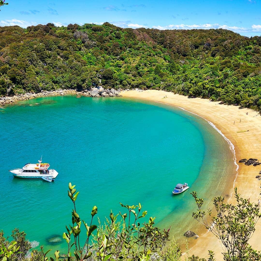Abel Tasman Park Beach Cove, New Zealand