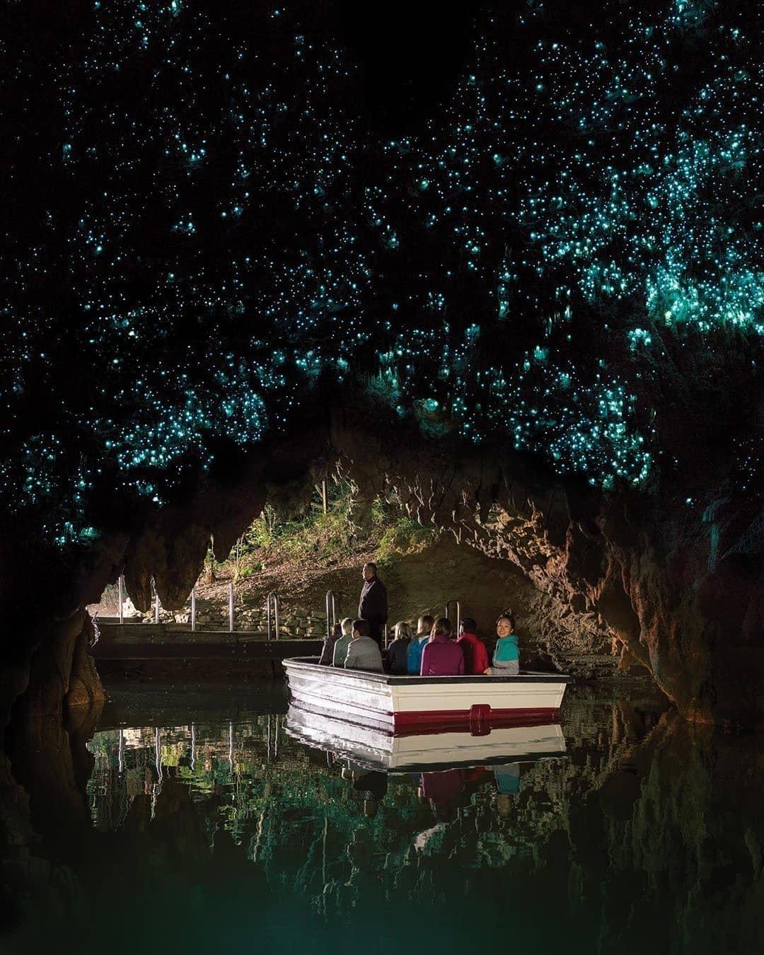 Hang đom đóm Waitomo Glow Worm, New Zealand