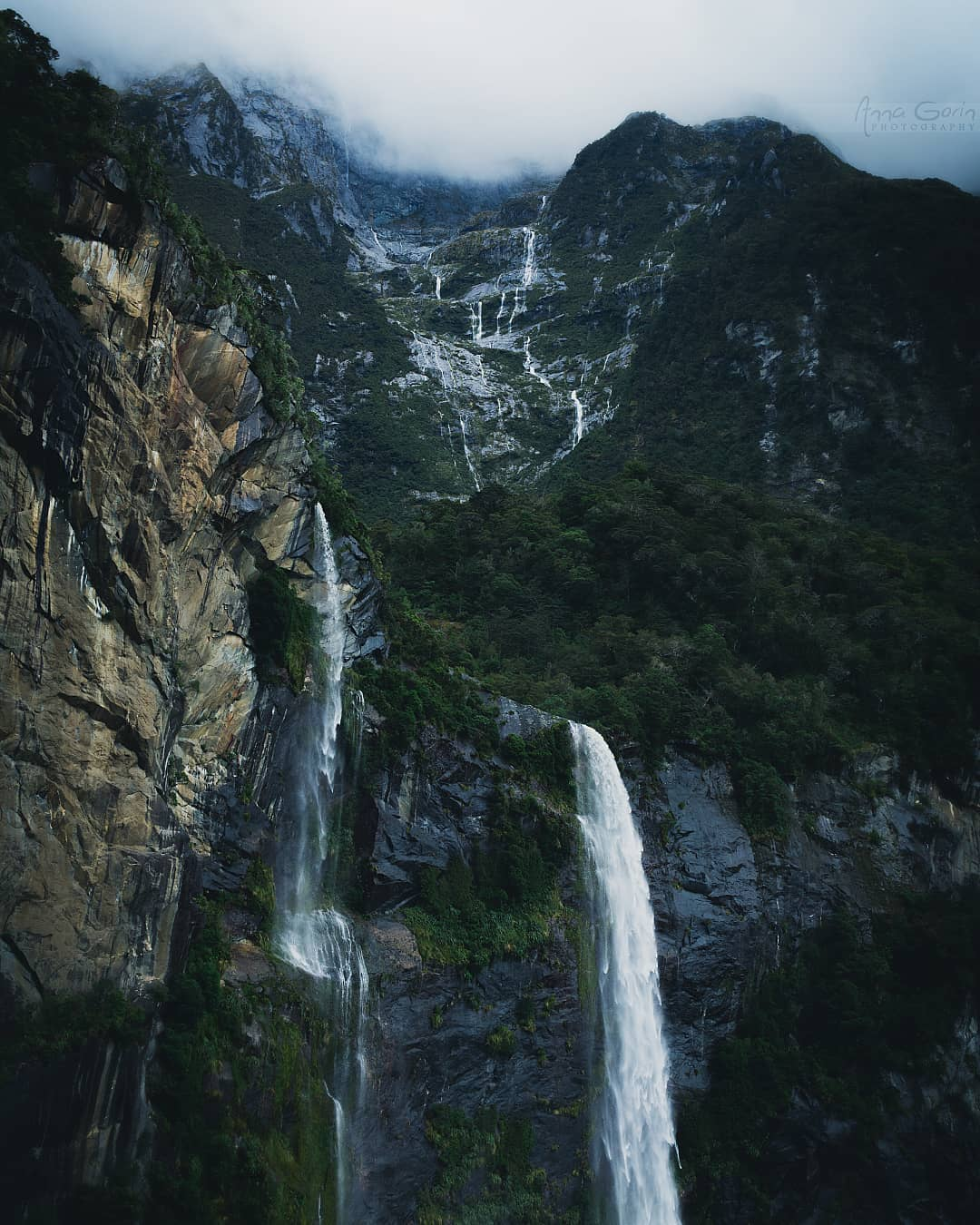 Vịnh Milford Sound, New Zealand